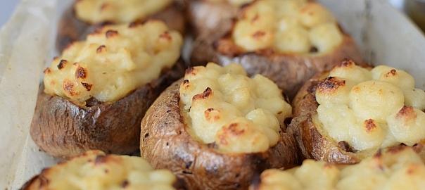 אלמוגי תפוחי אדמה